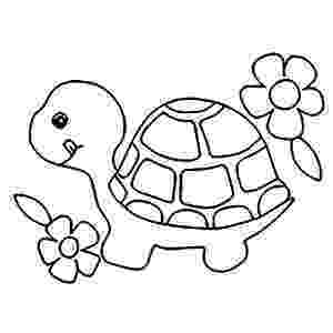 coloring pictures of turtles snapping turtle coloring pages at getcoloringscom free coloring turtles of pictures