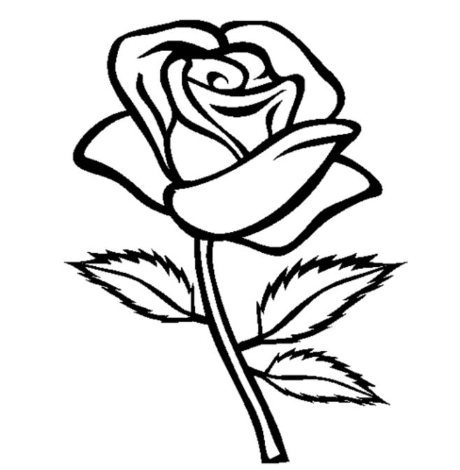 coloring roses coloring ville roses coloring