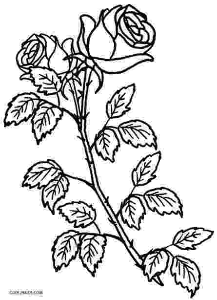 coloring roses printable rose coloring pages for kids cool2bkids roses coloring 1 1
