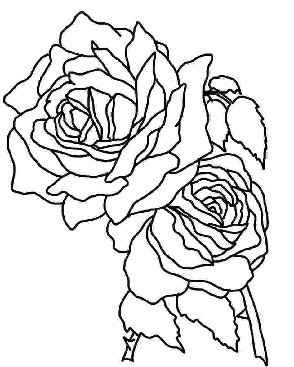 coloring roses roses coloring pages to download and print for free roses coloring 1 1