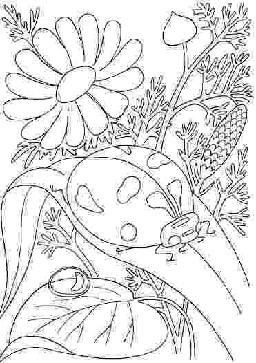 coloring sheets for older students coloring pages for older students at getdrawings free students sheets coloring for older