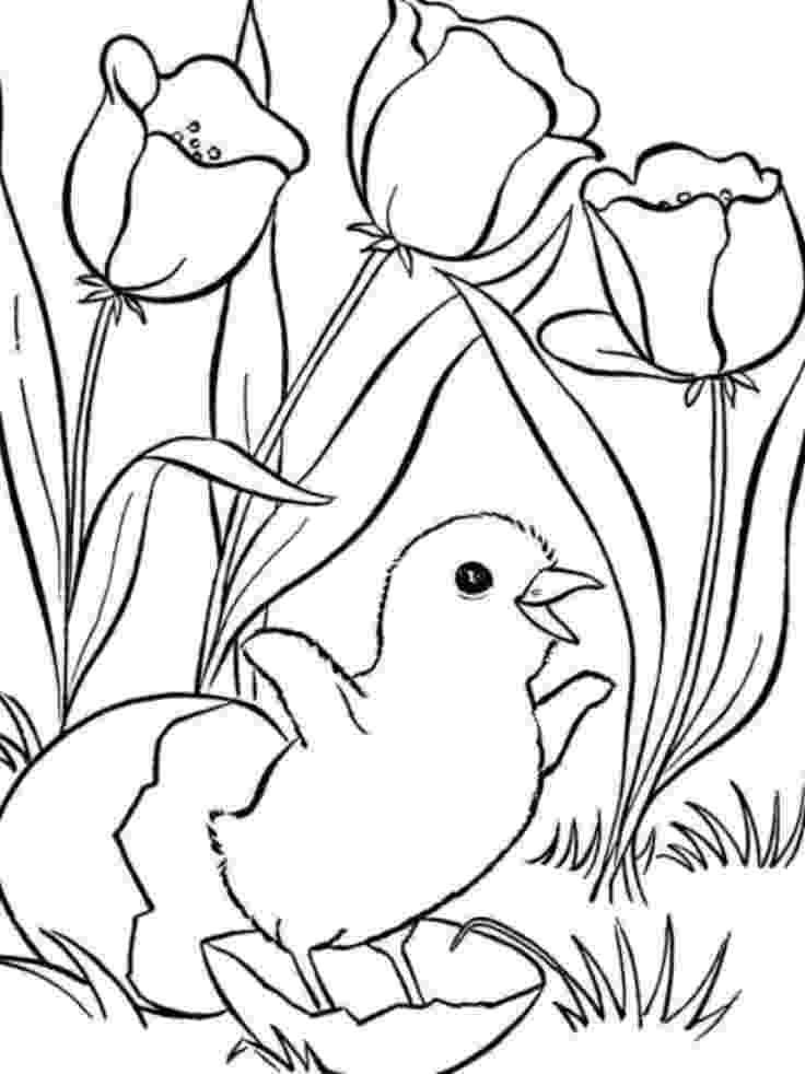 coloring sheets for older students summer coloring pages for older kids free large images for students sheets older coloring