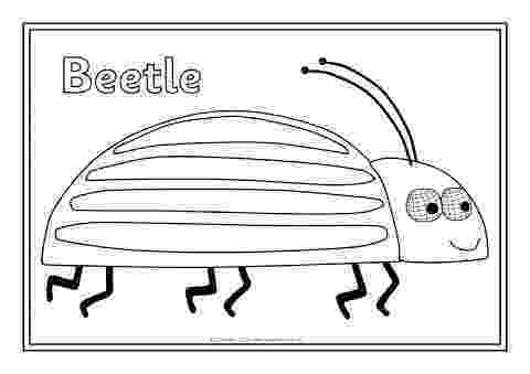 colour by number minibeasts minibeast colouring sheets sb2278 sparklebox by colour minibeasts number
