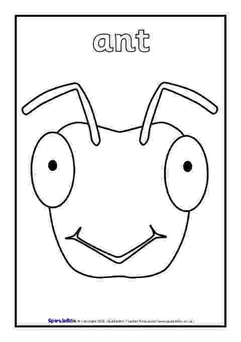 colour by number minibeasts minibeasts colouring page mini beasts pinterest by minibeasts colour number