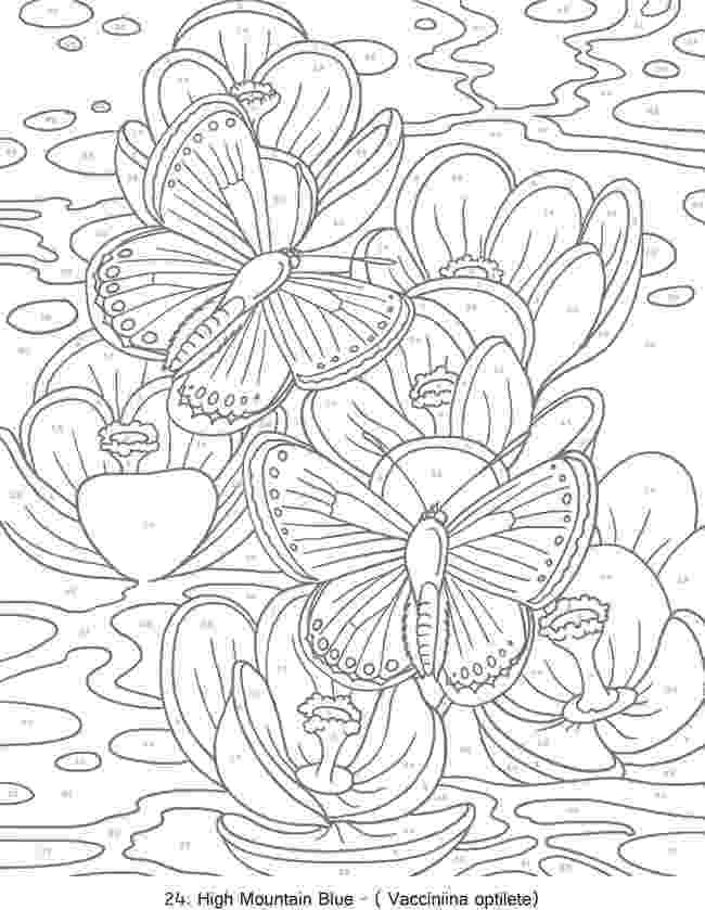 colouring for adults by numbers 344 best dover samples butterfly bird and flower adults colouring for numbers by