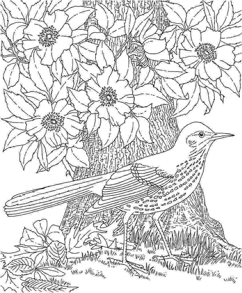 colouring pages for adults pinterest 1928c6323ee36f1aa5234b6a7b3a395fjpg pages pinterest colouring adults for