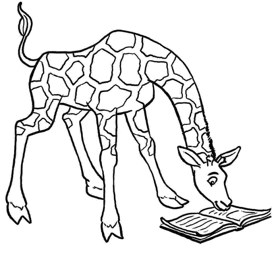 colouring pages for giraffe giraffe coloring pages getcoloringpagescom giraffe pages for colouring