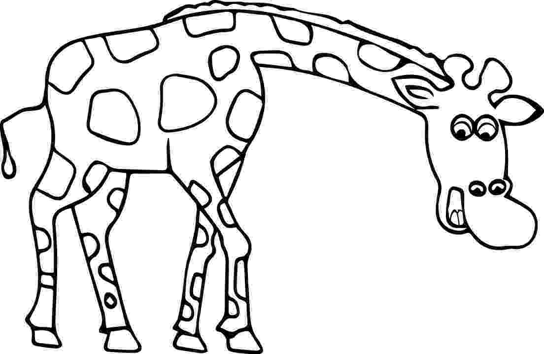 colouring pages for giraffe giraffe line drawing at getdrawingscom free for colouring giraffe for pages