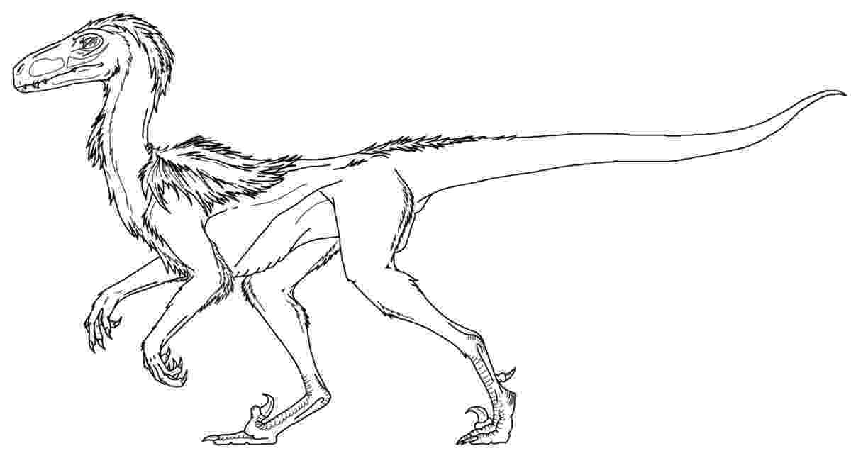 colouring pages velociraptor raptor coloring pages download and print for free velociraptor colouring pages