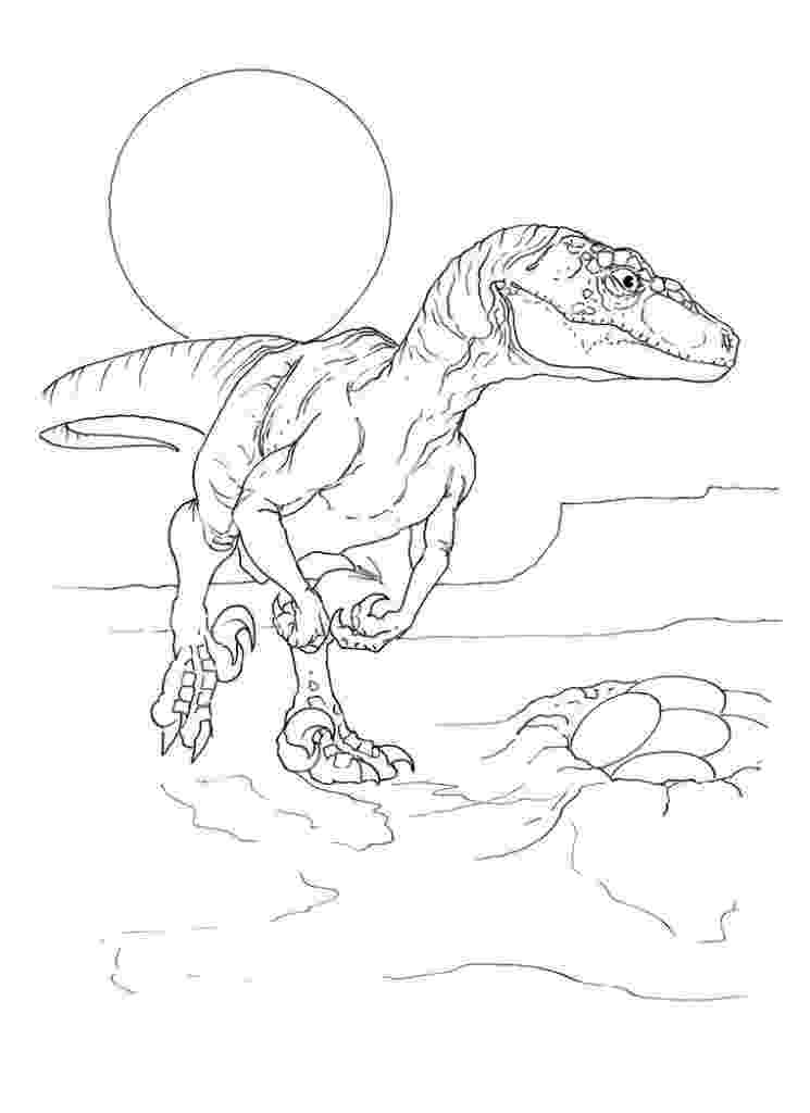 colouring pages velociraptor velociraptor coloring pages best coloring pages for kids velociraptor pages colouring 1 2