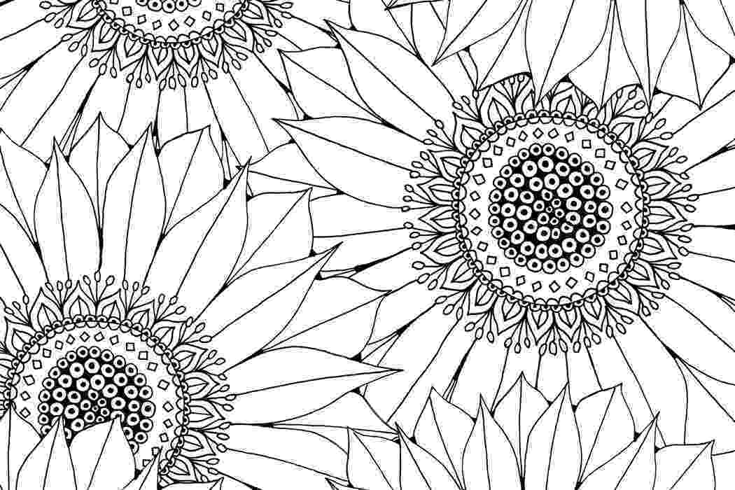 colouring patterns sunflower free pattern download hobbycraft blog colouring patterns