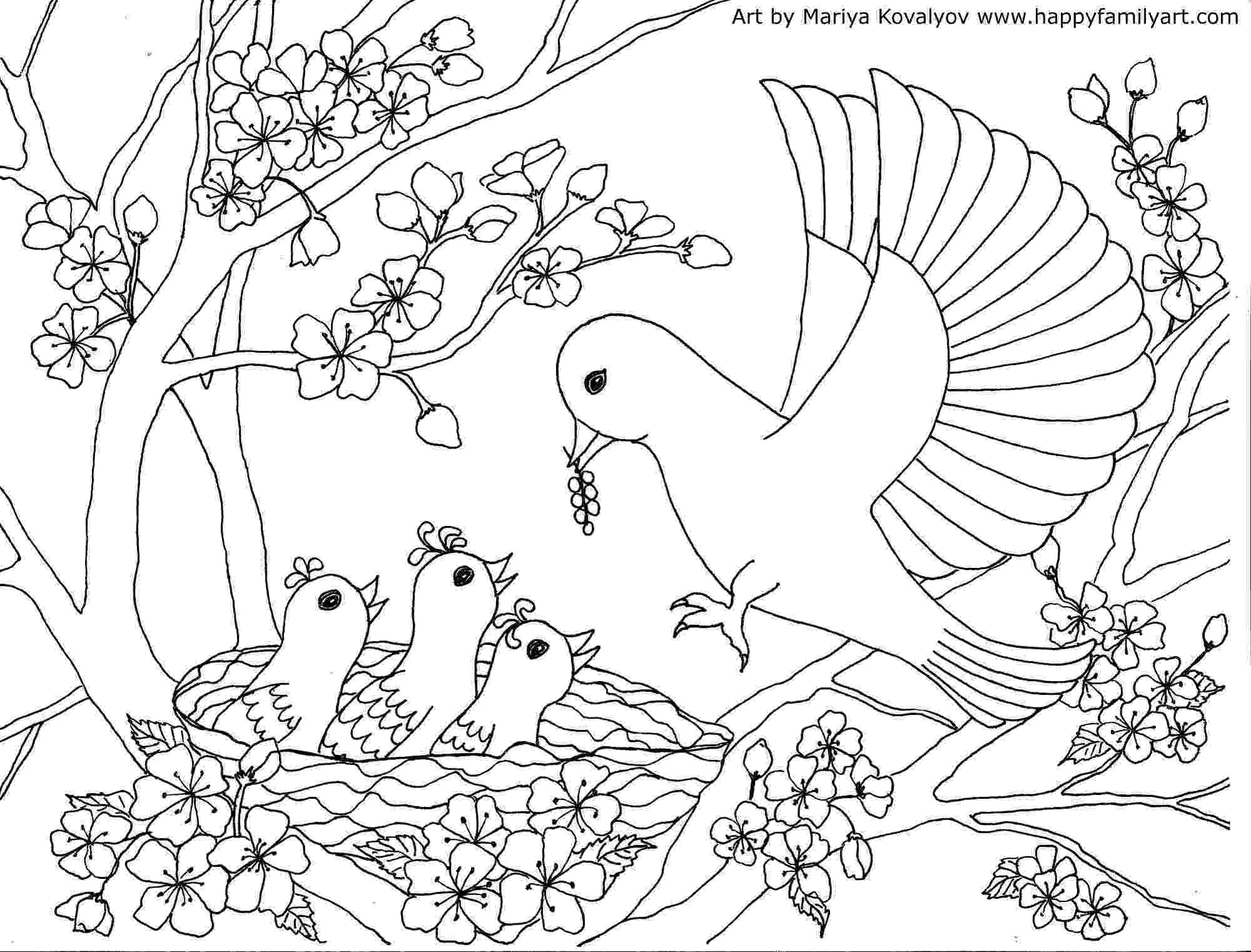 colouring picture bird birds coloring page happy family art bird colouring picture