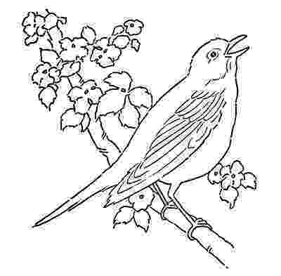 colouring picture bird red bird coloring activity for older kids amara39s 1st picture bird colouring