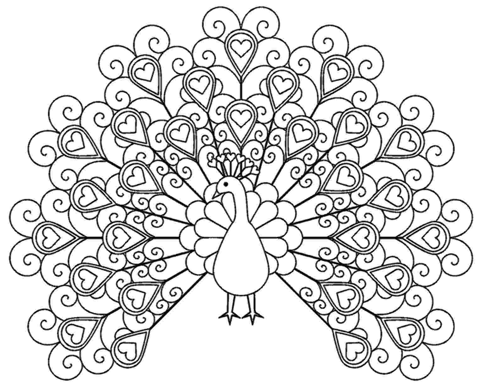 colouring picture of peacock colouring pages adult coloring pages of the tangled peacock colouring picture of peacock