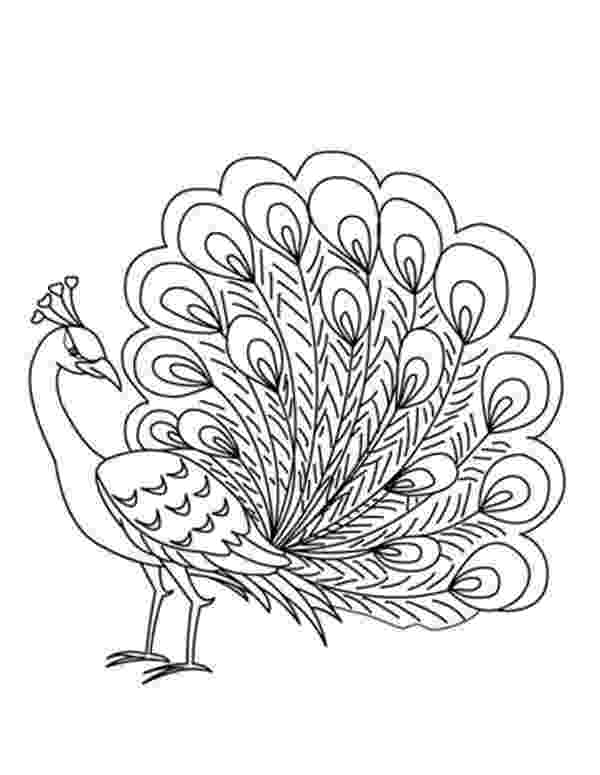 colouring picture of peacock peacock coloring pages to download and print for free colouring of peacock picture