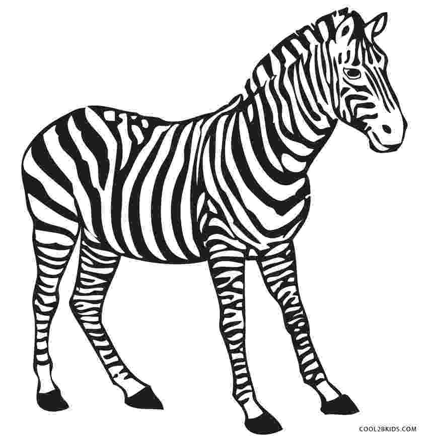 colouring picture of zebra free printable zebra coloring pages for kids cool2bkids colouring picture of zebra