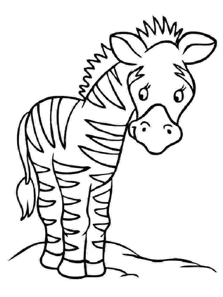 colouring picture of zebra free printable zebra coloring pages for kids zebra of colouring picture