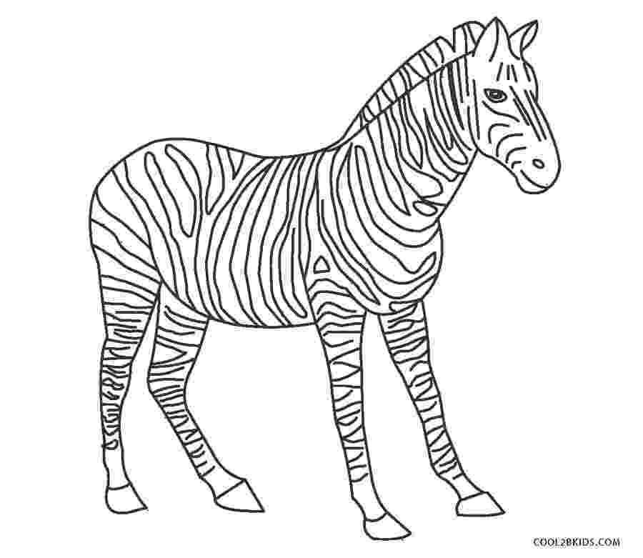 colouring picture of zebra zebra coloring pages getcoloringpagescom zebra picture of colouring
