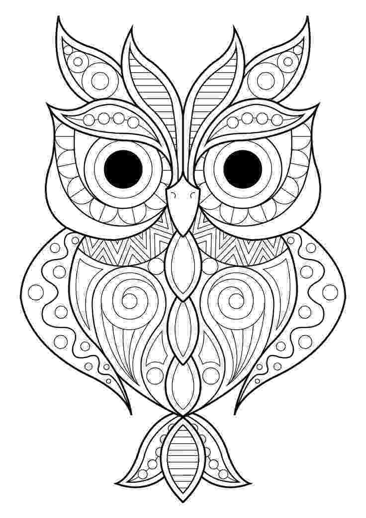 colouring pictures of owls owl with rose coloring page free printable coloring pages owls of pictures colouring