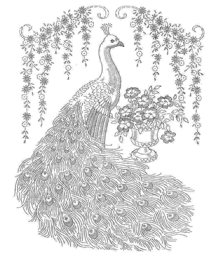 colouring pictures of peacock 17 best images about peacock on pinterest printable pictures peacock of colouring
