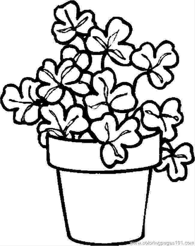 colouring pictures of plants growing things kids environment kids health national colouring pictures of plants