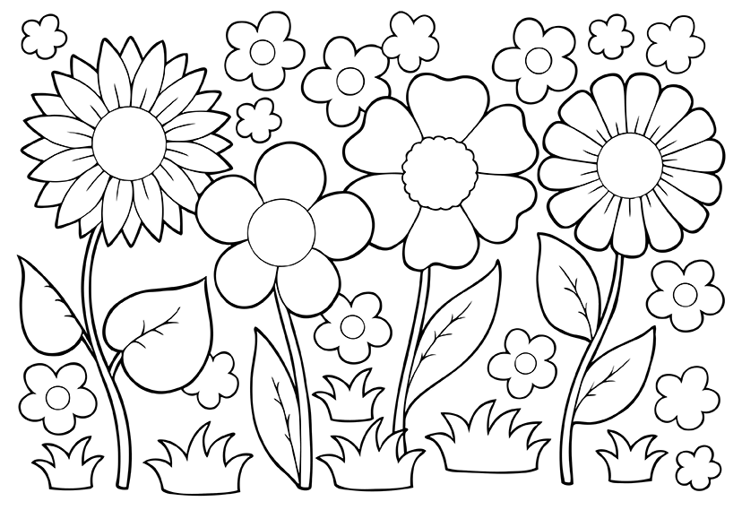 colouring pictures of plants parts of a plant activity sheet pictures plants of colouring