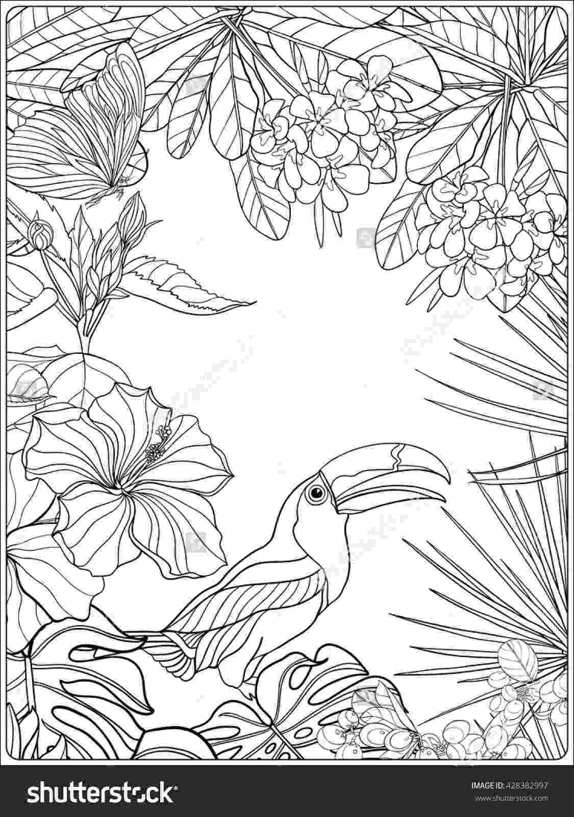 colouring pictures of plants tropical wild birds and plants tropical garden collection plants colouring of pictures