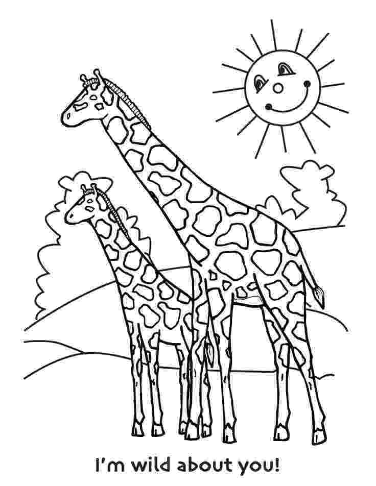 colouring sheet giraffe giraffe coloring pages getcoloringpagescom sheet giraffe colouring