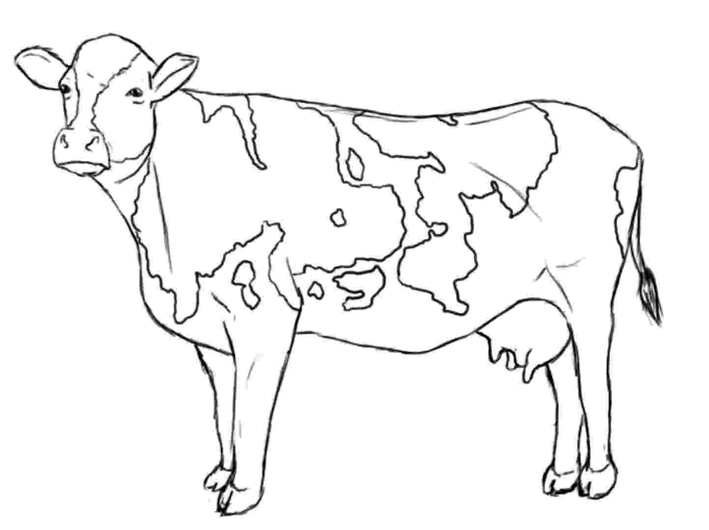 cow coloring pages cute cow animal coloring books for kids drawing pages coloring cow