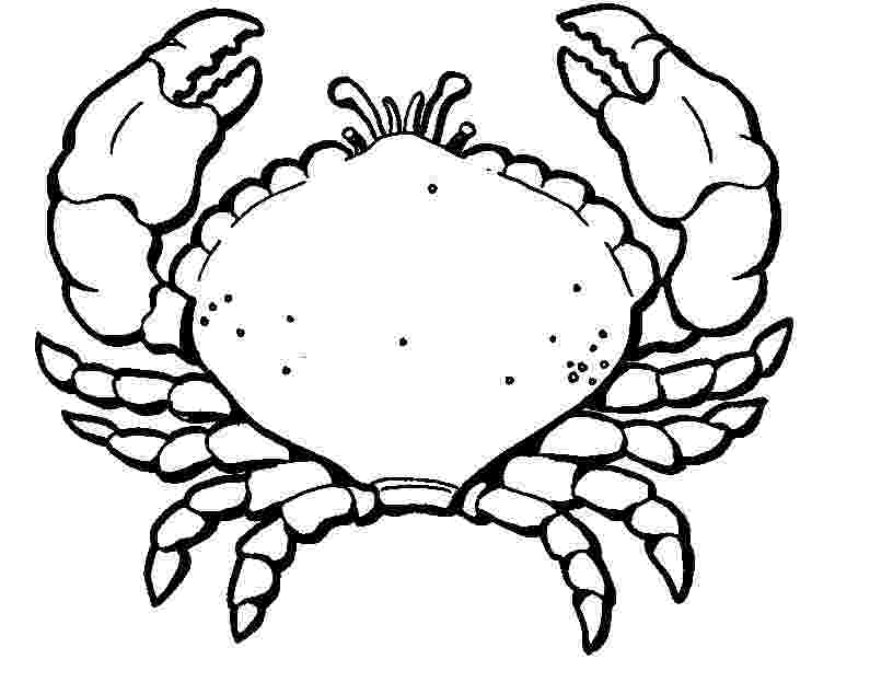 crab pictures to colour crab coloring pages by mason free printables colour pictures to crab