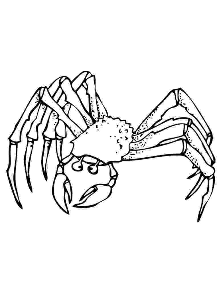 crab pictures to colour free printable crab coloring pages for kids colour crab pictures to