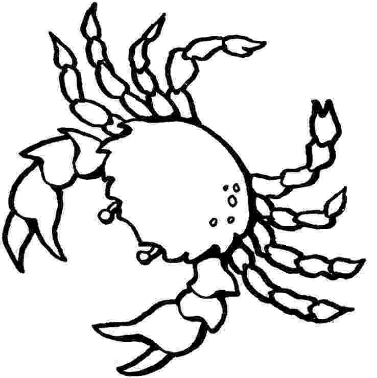 crab pictures to colour free printable crab coloring pages for kids to colour pictures crab