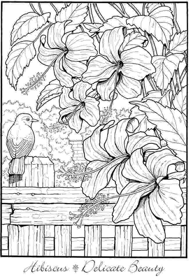 creative coloring pages 1391 best creative haven coloring pages by dover images by coloring pages creative 1 1