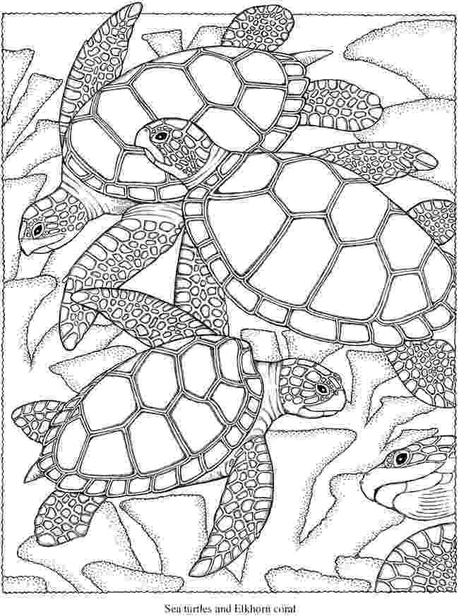 creative coloring pages welcome to dover publications pages creative coloring