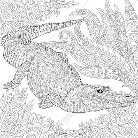 crocodile colouring page alligators and crocodiles coloring pages download and colouring crocodile page