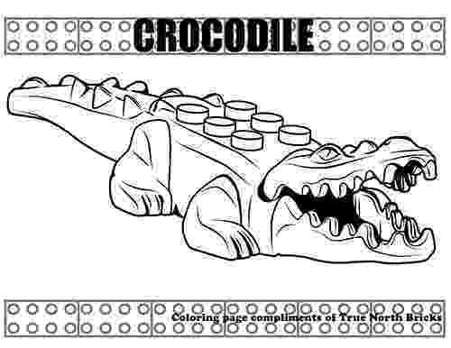 crocodile colouring page coloring page crocodile true north bricks colouring page crocodile
