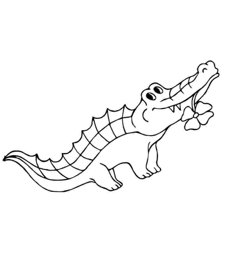 crocodile colouring page free printable alligator coloring pages for kids page crocodile colouring