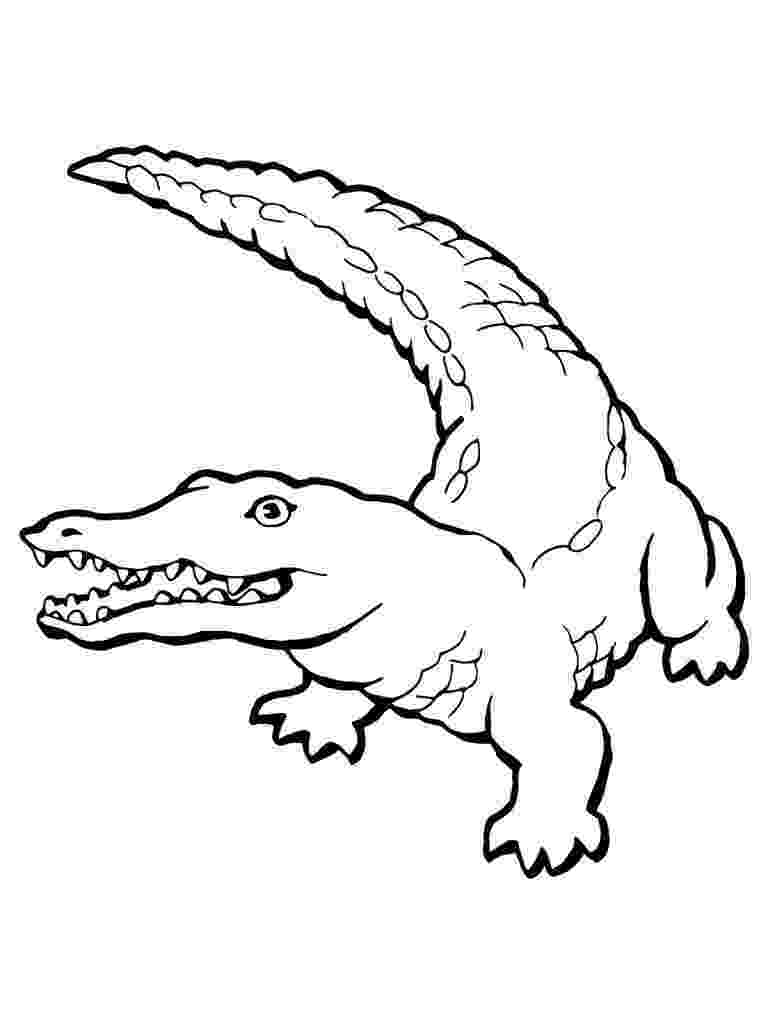 crocodile pictures to colour free printable crocodile coloring pages for kids to colour crocodile pictures