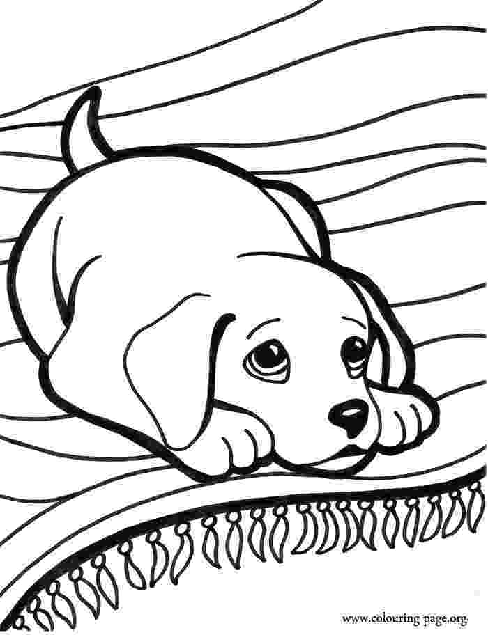 cute dog pictures to colour cute puppy coloring pages getcoloringpagescom pictures cute colour dog to