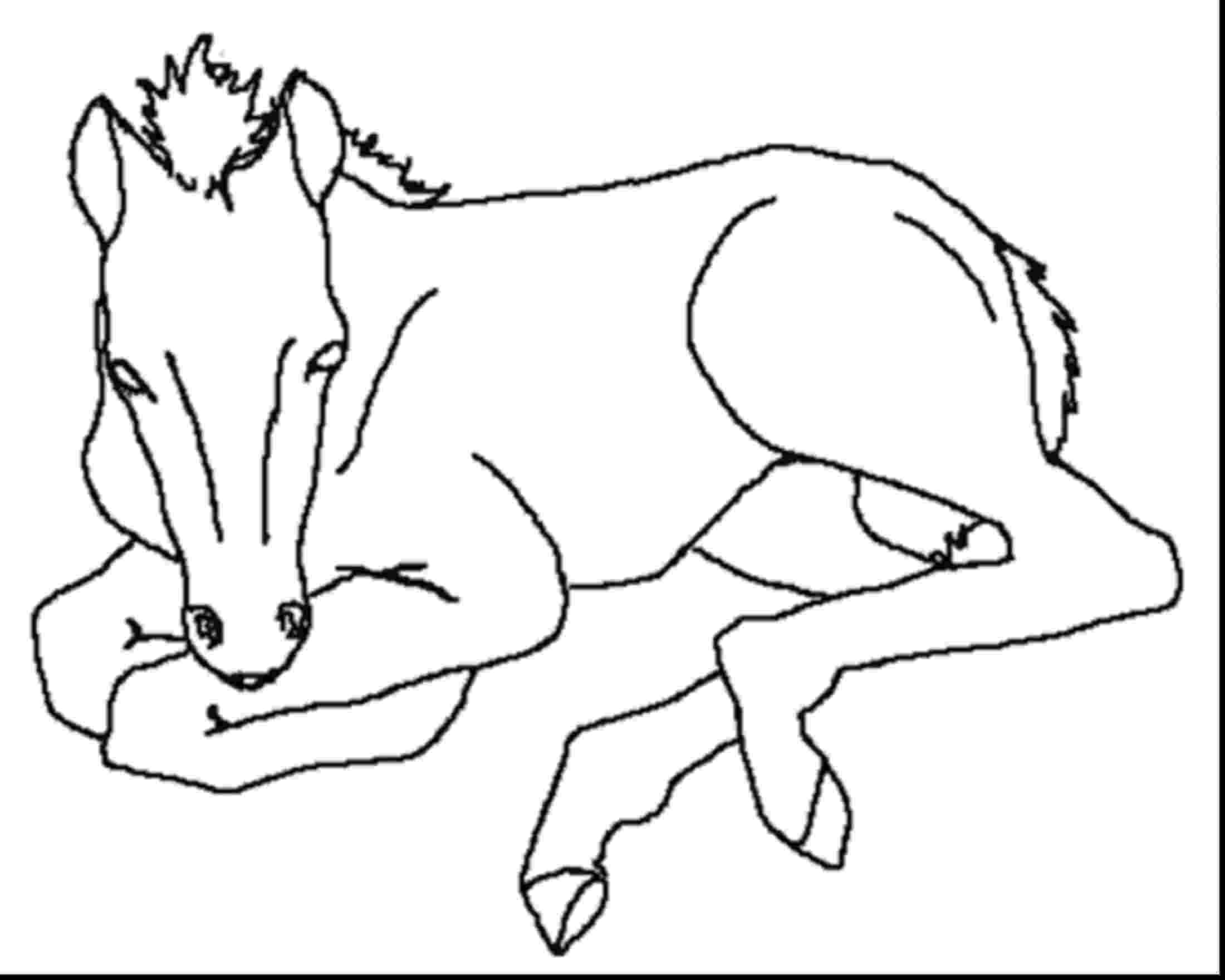 cute horse coloring pages cute horse cartoon in horses coloring page download pages cute coloring horse