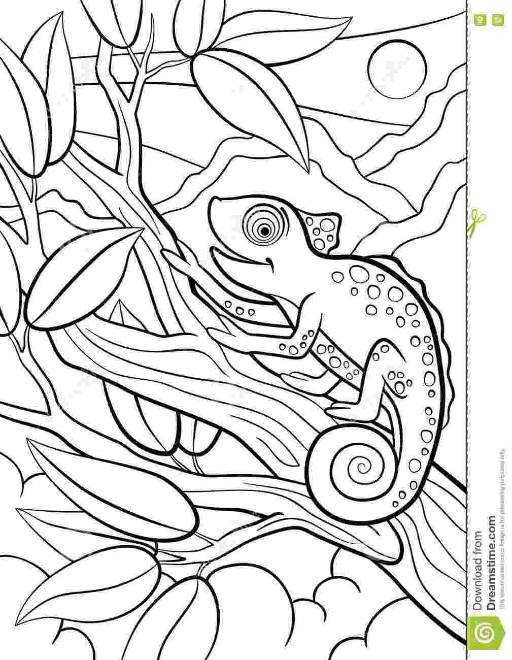 cute wild animals colouring pages coloring pages wild animals little cute fox looks at the animals cute wild colouring pages