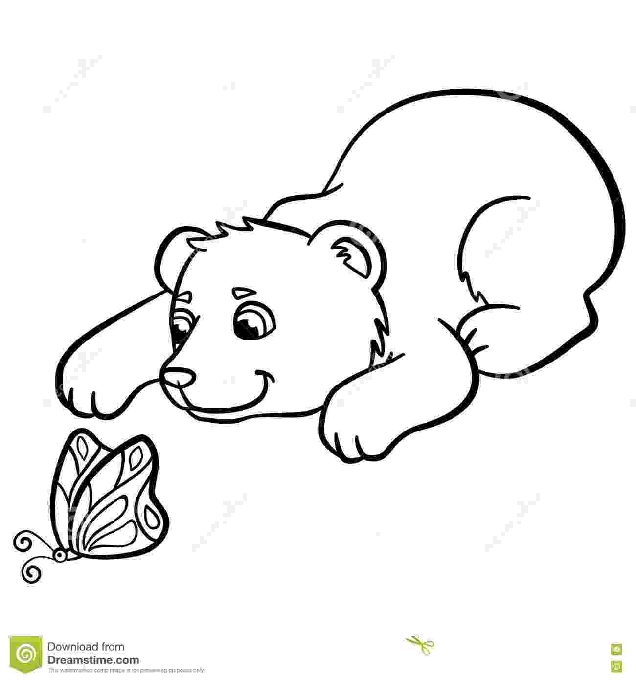 cute wild animals colouring pages coloring pages wild animals two little cute chameleon animals wild pages colouring cute
