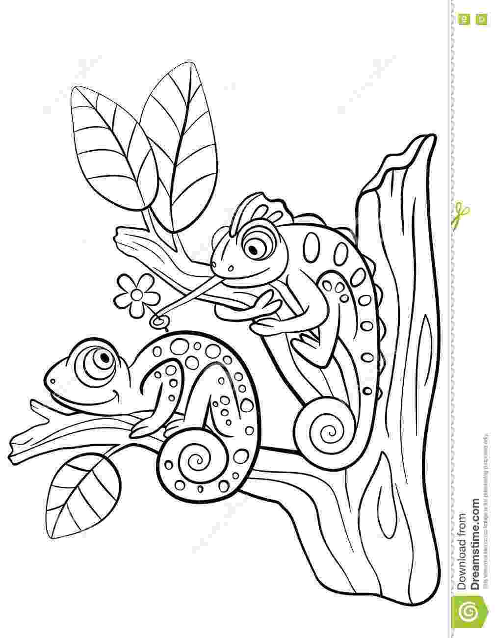 cute wild animals colouring pages wild animal coloring pages mother and baby zebra animals colouring pages wild cute