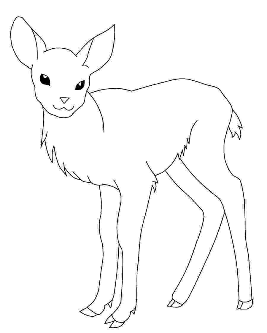 deer coloring sheet free printable deer coloring pages for kids coloring sheet deer 1 1