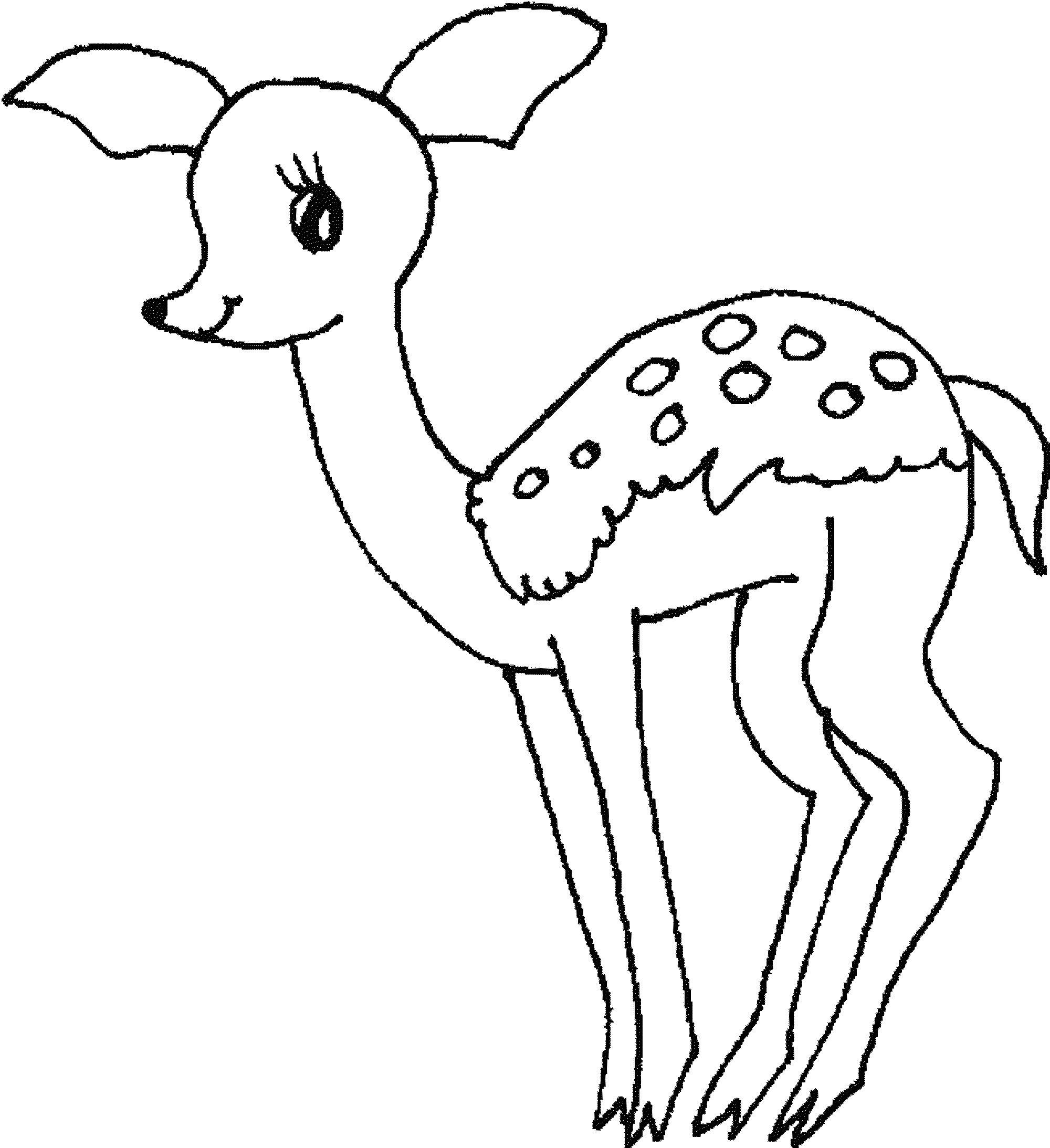 deer coloring sheet print download deer coloring pages for totally deer sheet coloring