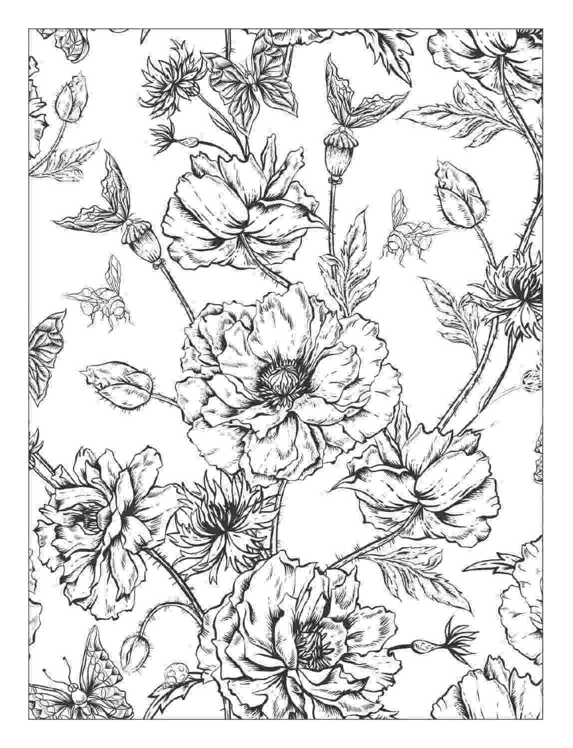 detailed flower coloring pages detailed coloring pages of flowers flower coloring pages coloring pages flower detailed