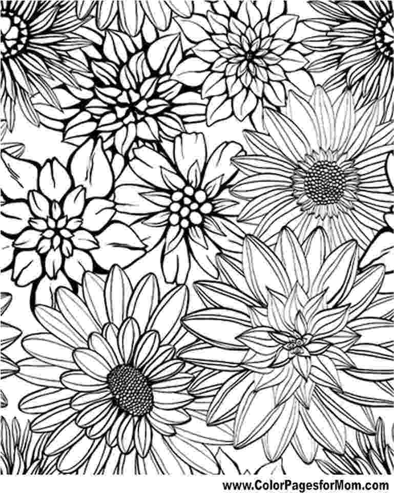 detailed flower coloring pages get this difficult adult coloring pages to print out 17395 pages detailed coloring flower