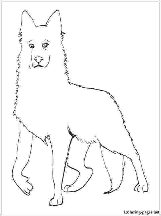 dog breeds coloring pages dog breed coloring pages coloring pages breeds dog