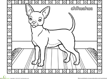 dog breeds coloring pages dog breed coloring pages dog breeds coloring pages dogs dog breeds coloring pages