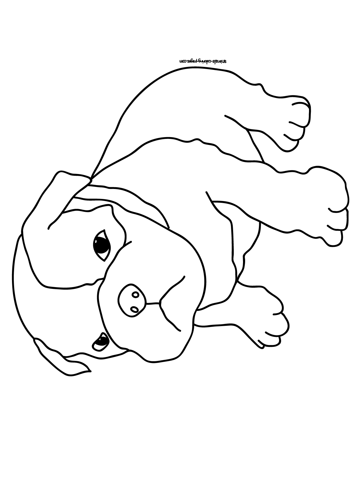 dogs to print faithful animal dog 20 dog coloring pages free printables print dogs to